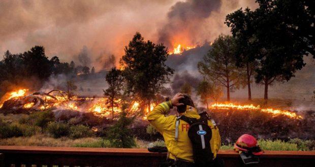 Bosbranden: getuigenis uit Californië