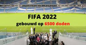 FIFA 2022, gebouwd op 6500 doden